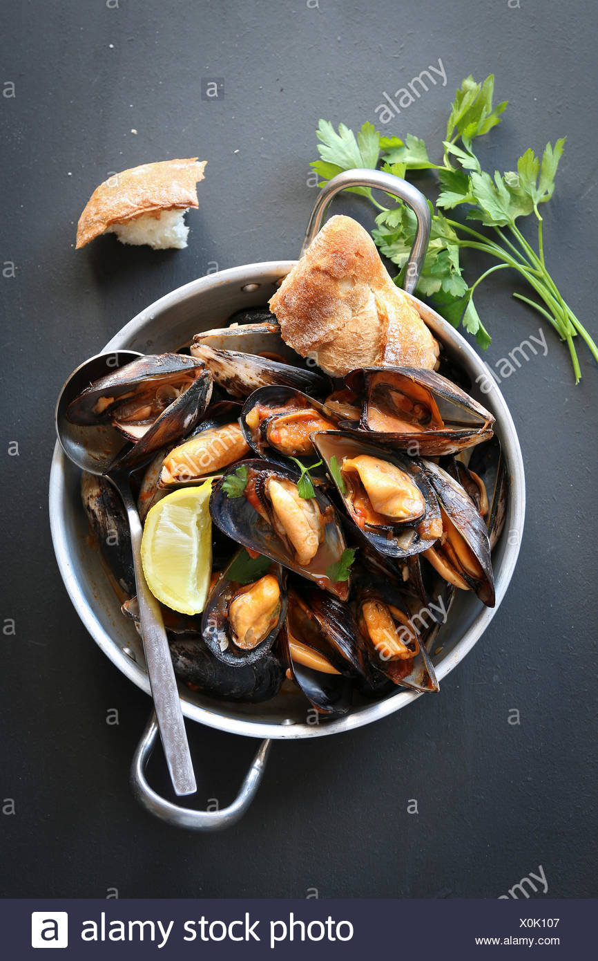 Cooked mussels in tomato sauce garnished with parsley - Stock Image