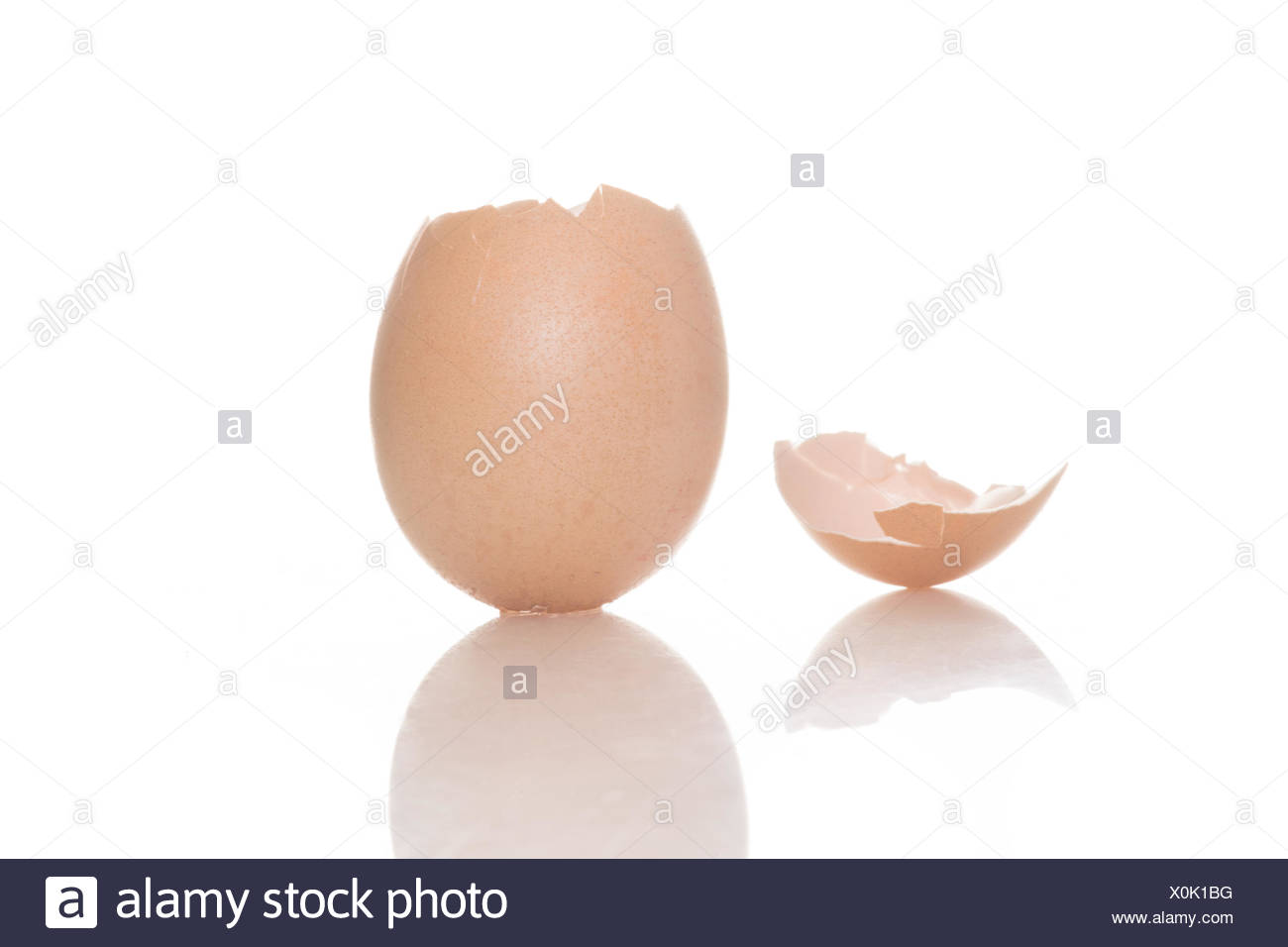 Empty broken egg shell on a white background - Stock Image