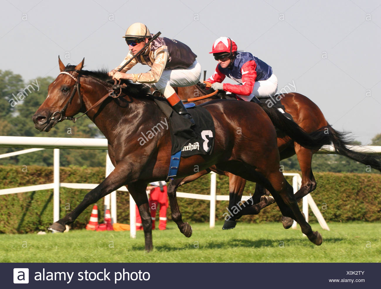 goal intakes 109 prince mountain running horse Day Walker and Jockey Andrasch Starke, Germany, Baden-Wuerttemberg, Baden-Baden - Stock Image