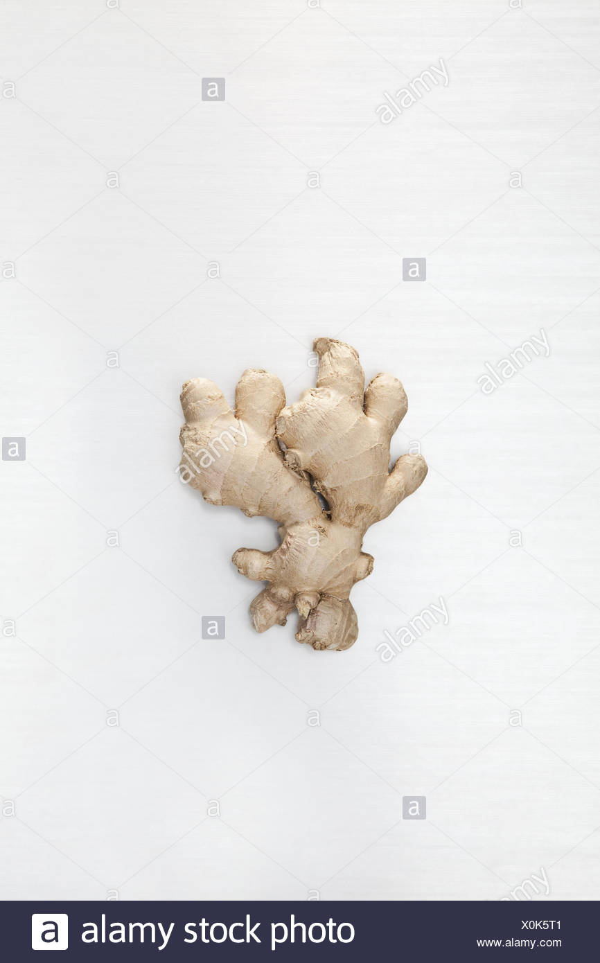 Ginger root, background white, gingers, root, nodule, ginger nodule, health, sharply, ingredient, food, ginger root, metabolism, extract, immune system, curative, alternatively, Chinese medicine, preventive, healthy, healthy nutrition, nutrition, spicy, Würzmittel, of course, vegetable, TCM, traditional Chinese medicine, in Indian, Asian, effect, blood circulation-supporting, stimulatingly, - Stock Image