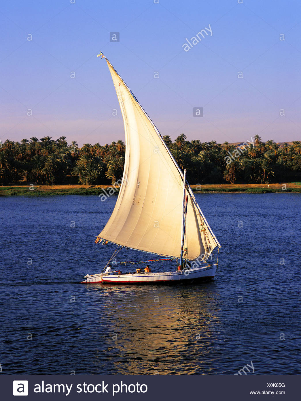 sailing boat felucca on the Nile, Egypt, Luxor - Stock Image
