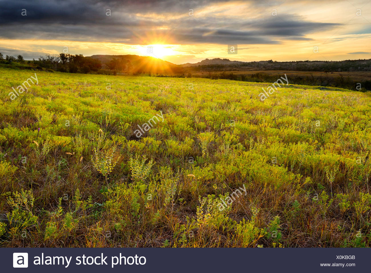 USA, United States, America, North America, Oklahoma, Comanche, Wichita, mountains, refuge, nature, landscape, grass, grassland, Stock Photo