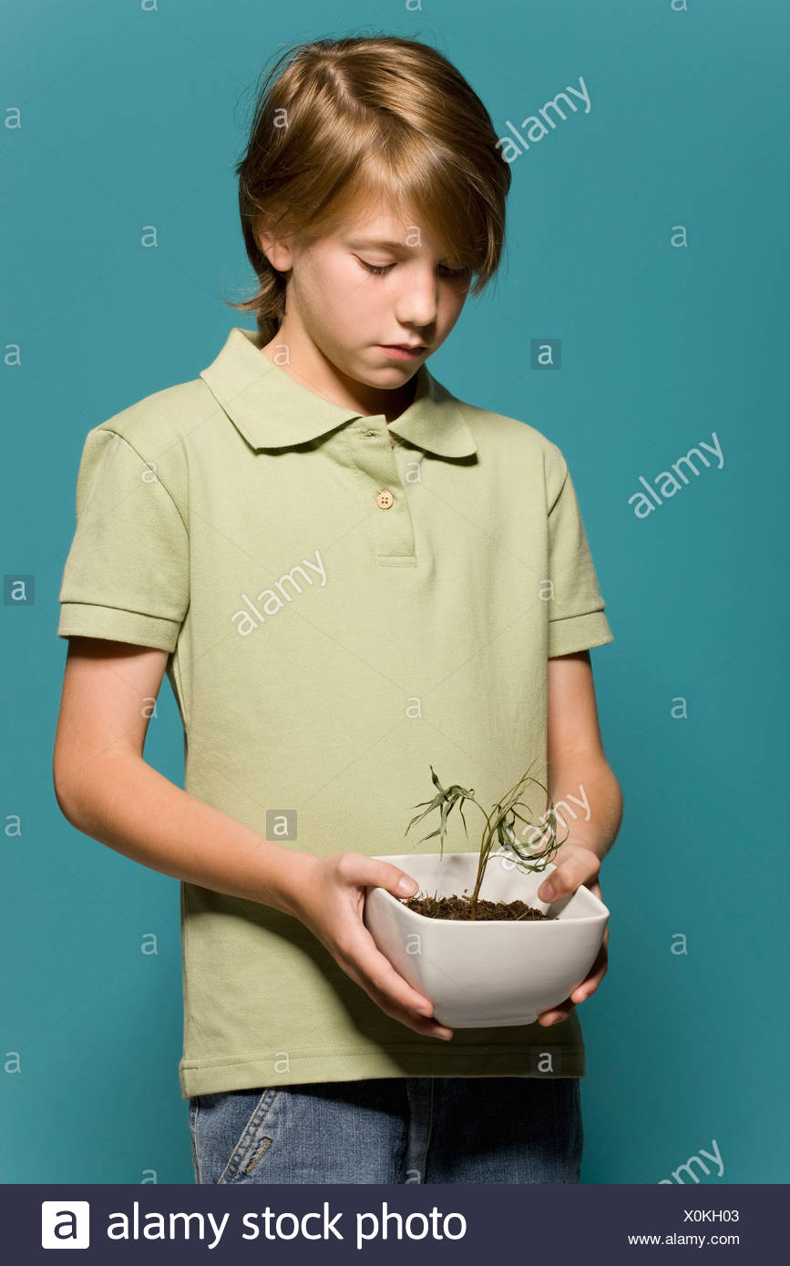 Boy holding wilted potted plant - Stock Image