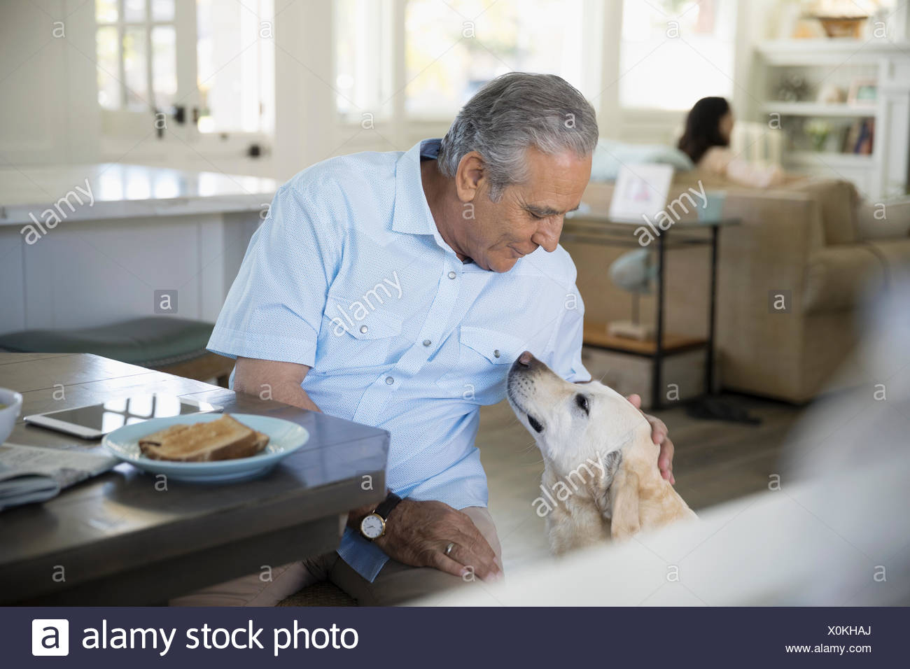 Senior man petting dog at breakfast table - Stock Image