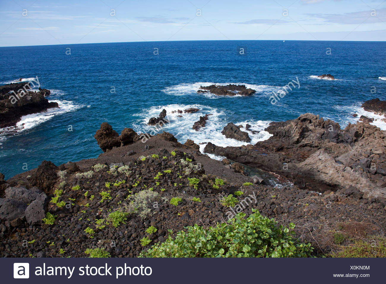 Rocky coast with sparse vegetation, Playa Cancajos, Santa Cruz in the back, La Palma, Canary Islands, Spain, Europe - Stock Image