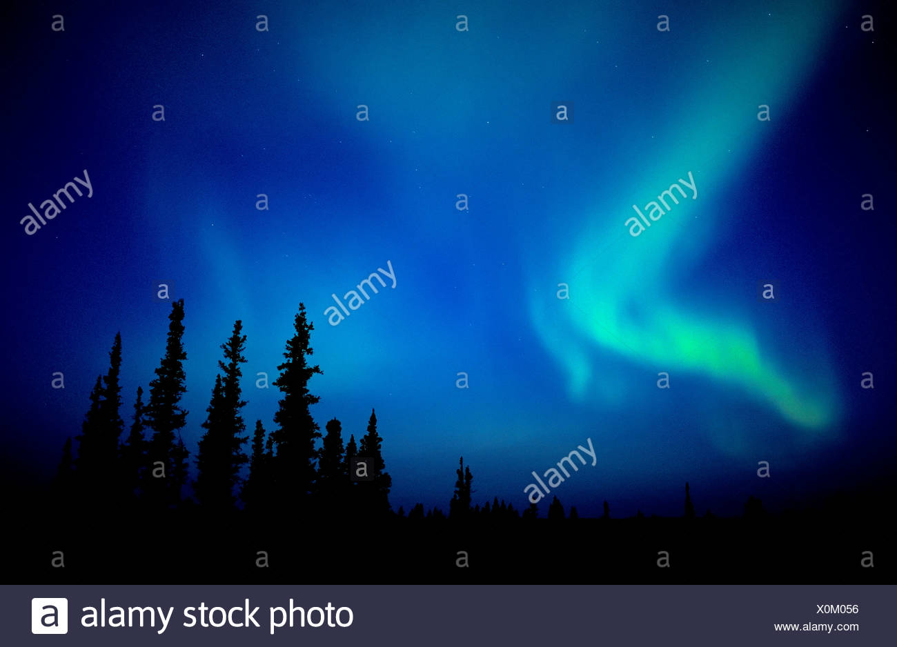 The northern lights (aurora borealis) sweep across the skies of northern Alberta, Canada. - Stock Image