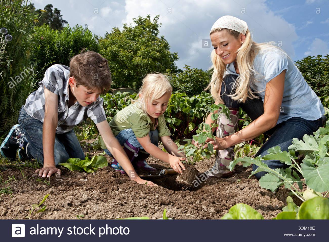 Germany, Bavaria, Altenthann, Woman and children gardening together in garden Stock Photo