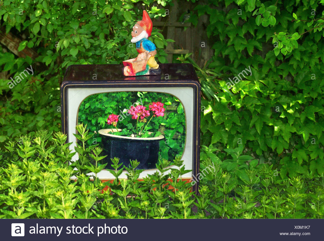 oddity, garden gnome standing on TV case, Additional-Rights-Clearance-Info-Not-Available - Stock Image