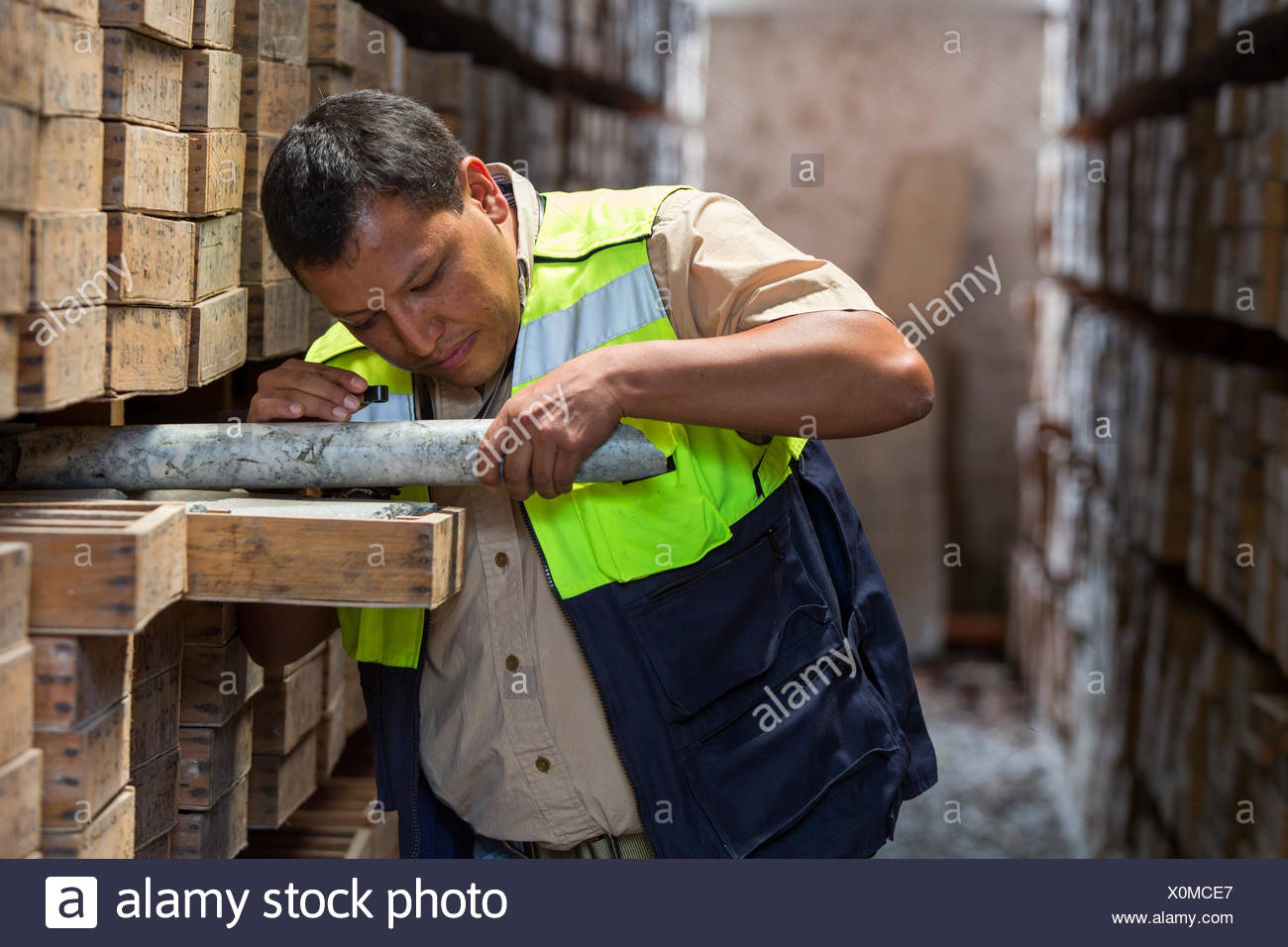 Geologist examines a core sample in his library. - Stock Image
