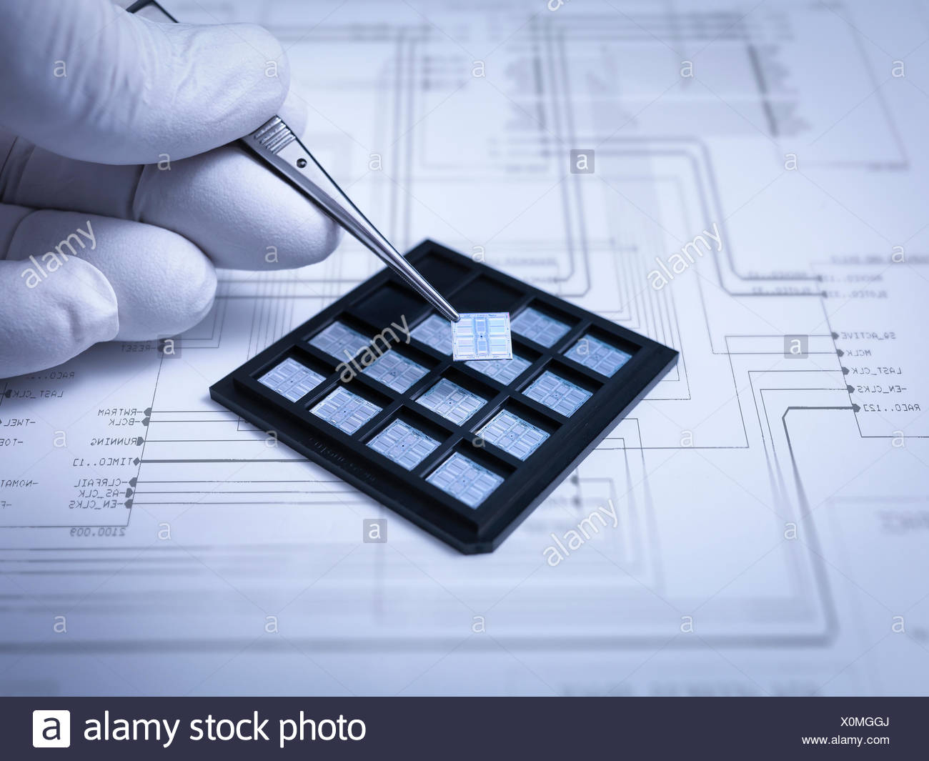 Small electronic chips held in tweezers in laboratory, close up - Stock Image