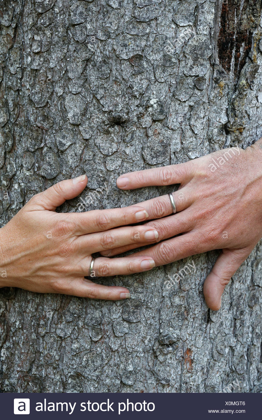 Close up of man's and woman's hands with wedding ring. - Stock Image