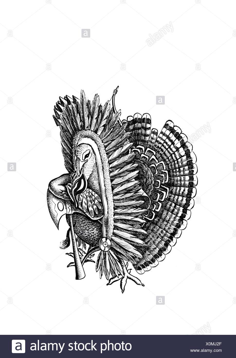 Turkey with Indian's headdress - Stock Image