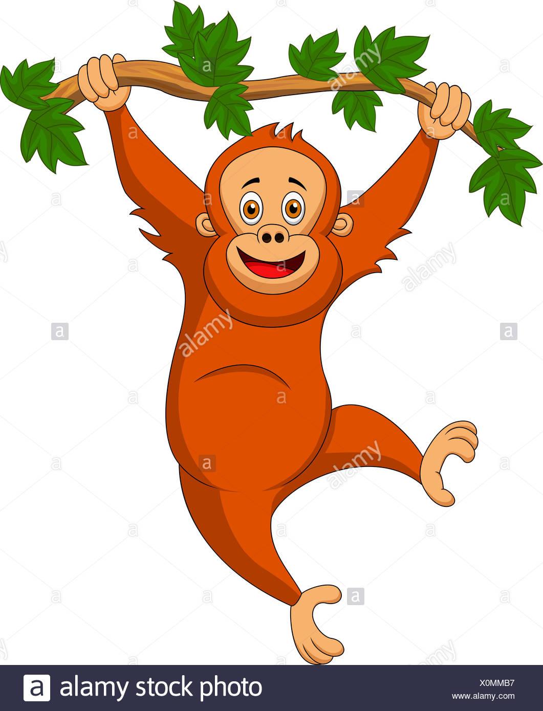 Orangutan Cartoon Orangutan Laugh...