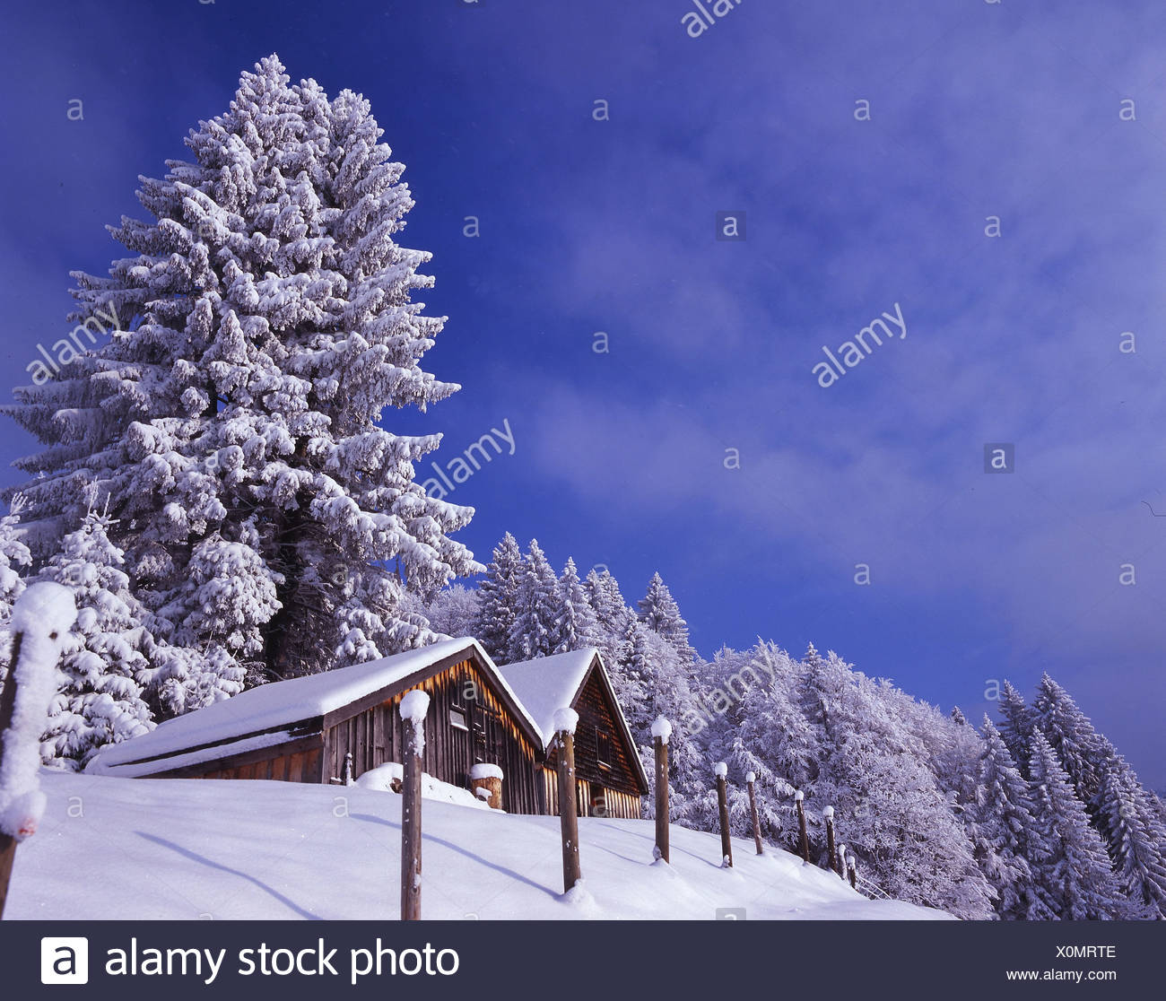winter strong brook hamlet Alp alpine chalets huts alpine huts snowbound snow-covered snowy coniferous fore - Stock Image