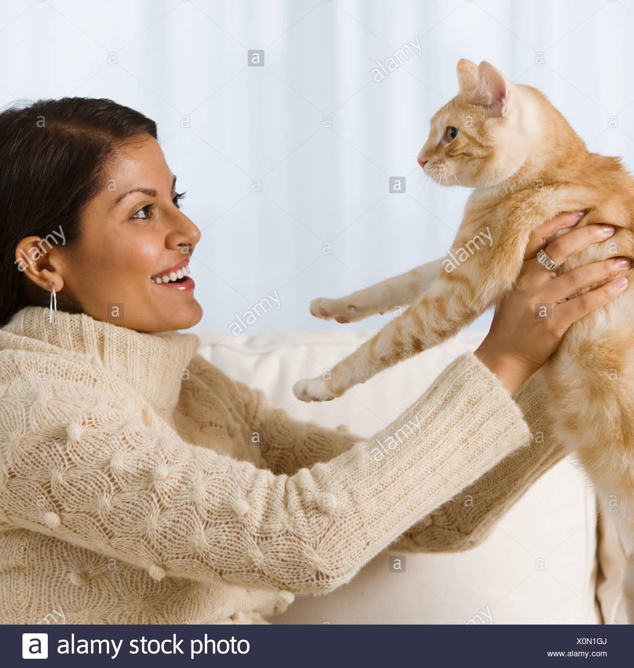 crazy cat videos 2014
