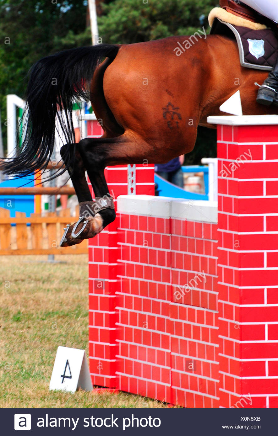 Showjumping / show jumping, wall, equestrian sport - Stock Image