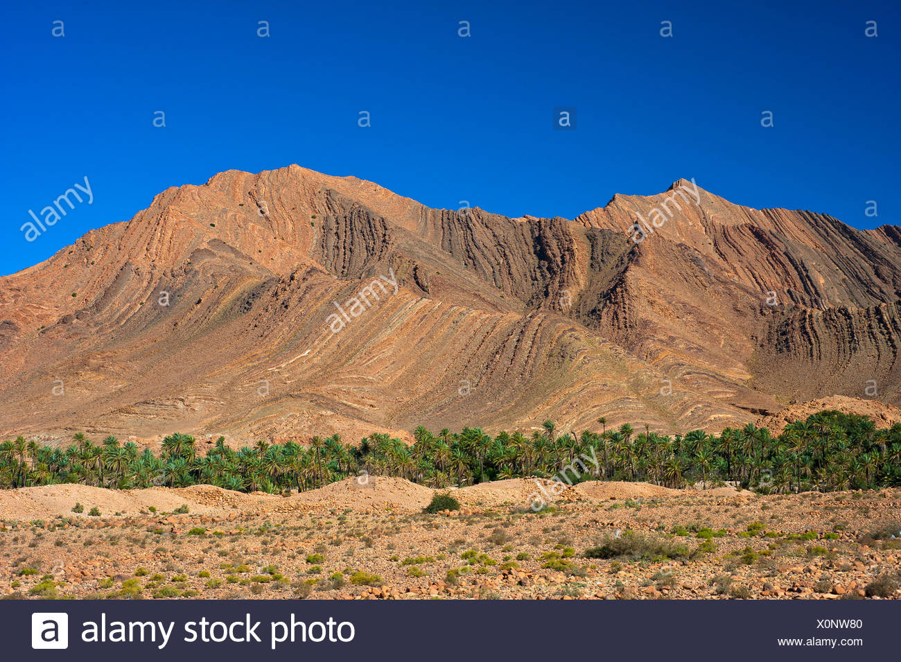Imposing mountain landscape with eroded hillsides in the Ait Mansour Valley, date palms growing in the dry river bed - Stock Image