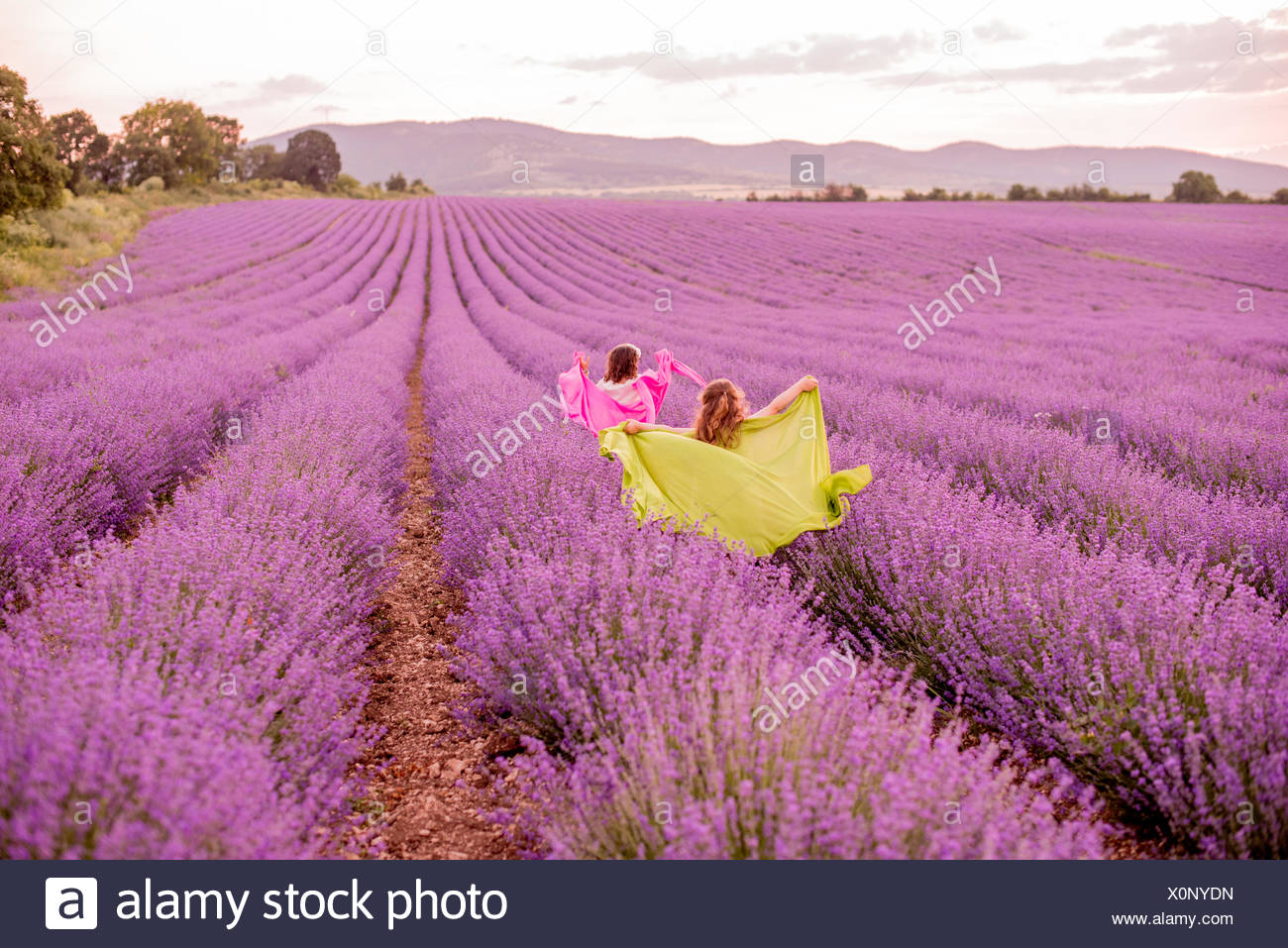 Two girls running through lavender field, Kazanlak, Bulgaria - Stock Image