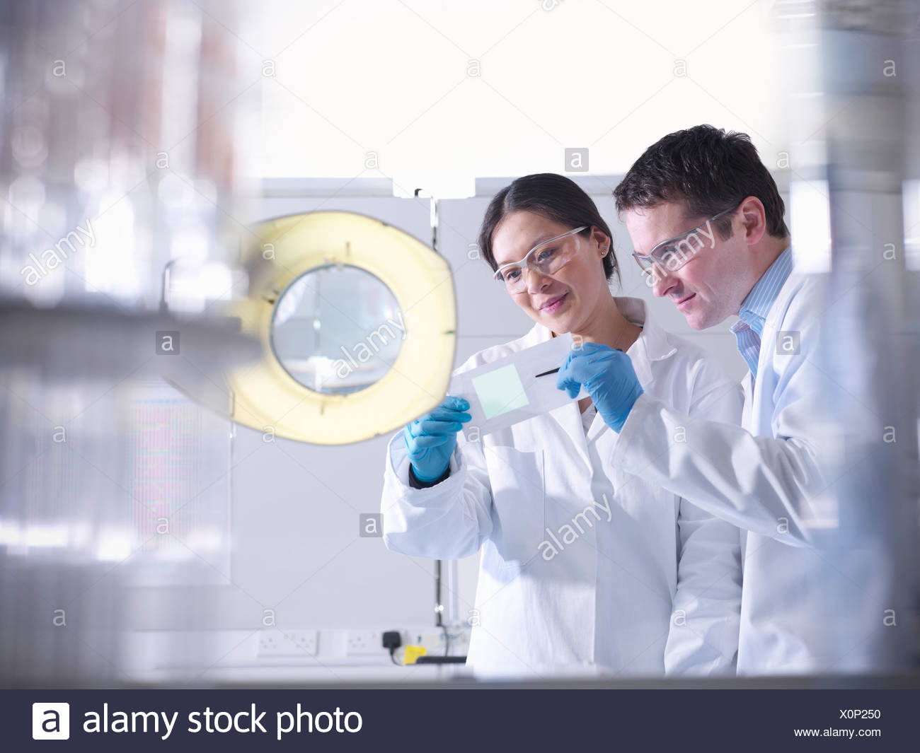 Scientists with product in laboratory - Stock Image