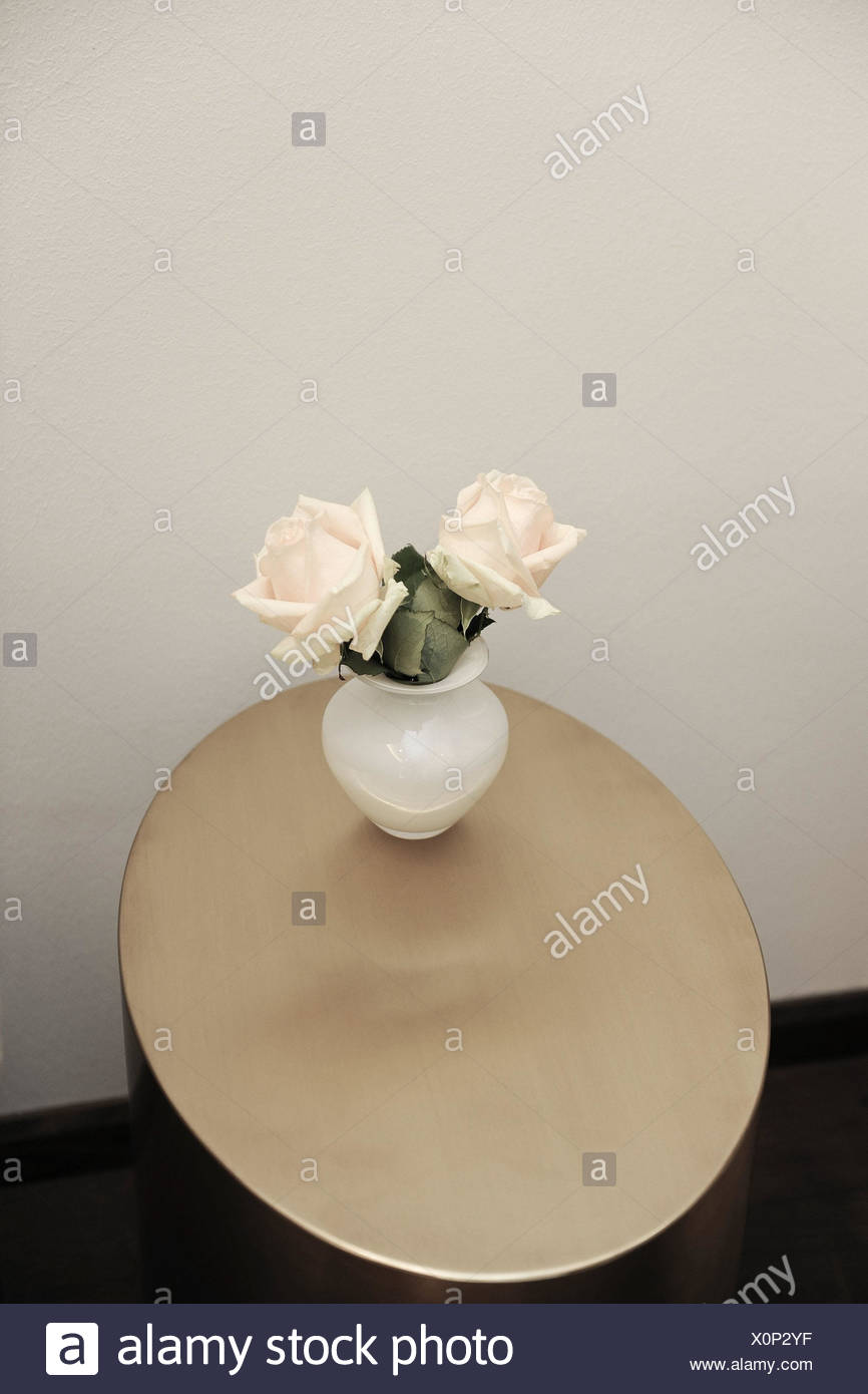 Table, flower vase, roses, rose, softly, freshly, roses, period of bloom, two, brightly, arrangement, flower arrangement, simply, Bouquet, reduces, only, classically, salmon-coloured, cut flowers, bioflowers, eingefogen, garden roses, adornment, vase, top view, friendly, jewellery, Deko, decoration, blossoms, - Stock Image