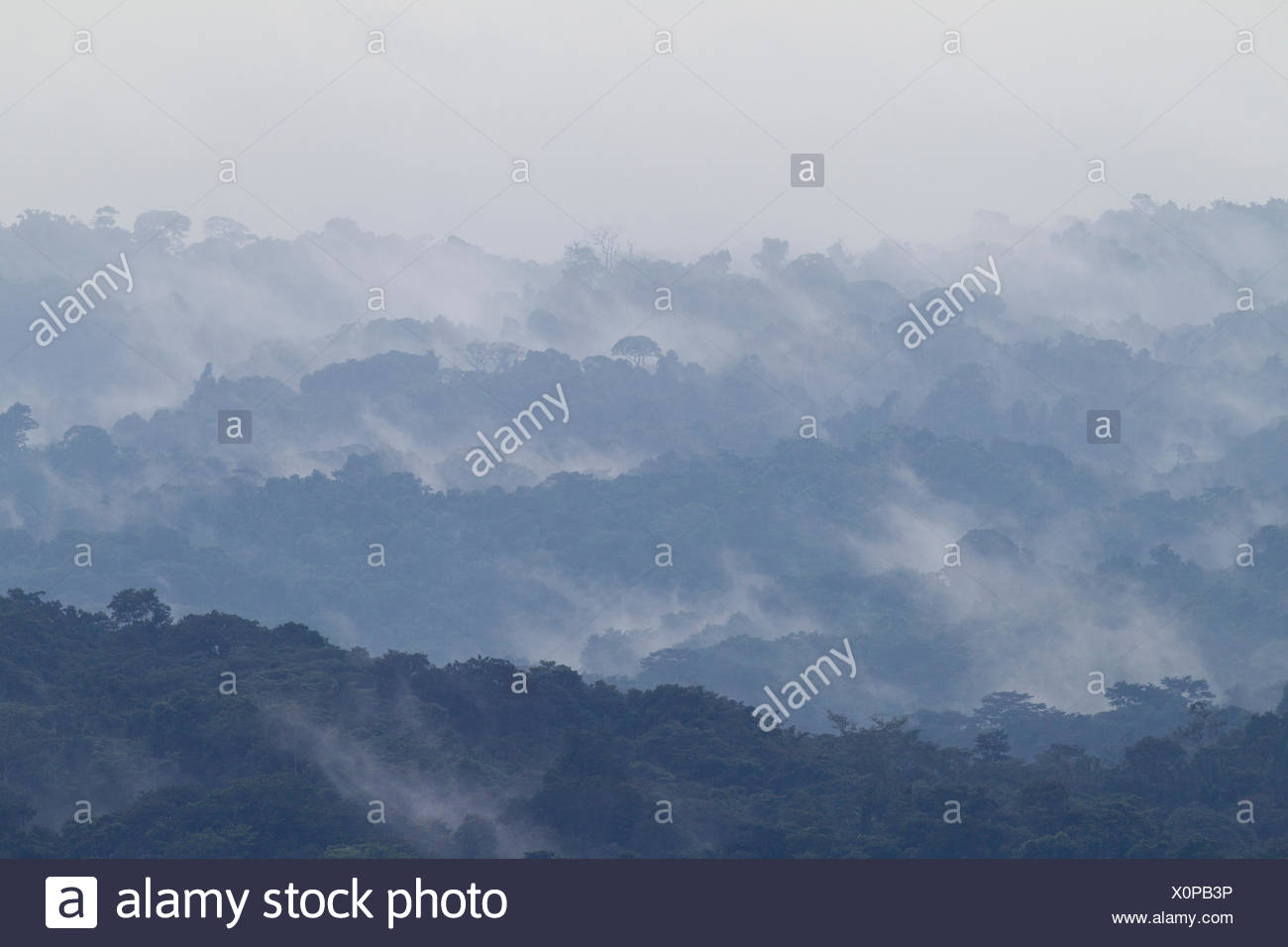 Tropical rainforest landscape with mist,  Barro Colorado Island, Gatun Lake, Panama Canal, Panama. - Stock Image