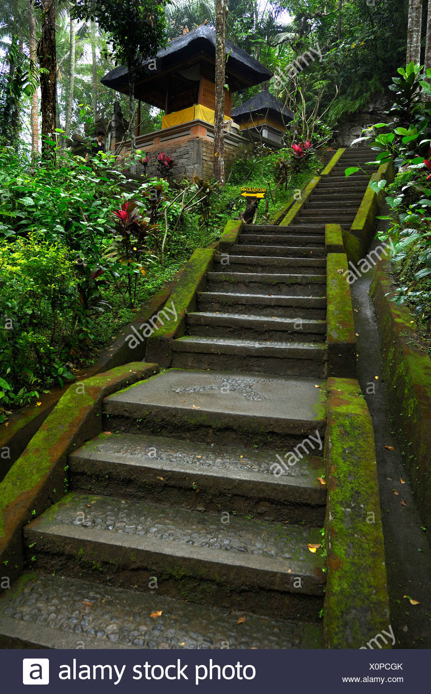 Stairs Leading To The Elephant Cave Goa Gajah Ubud Bali