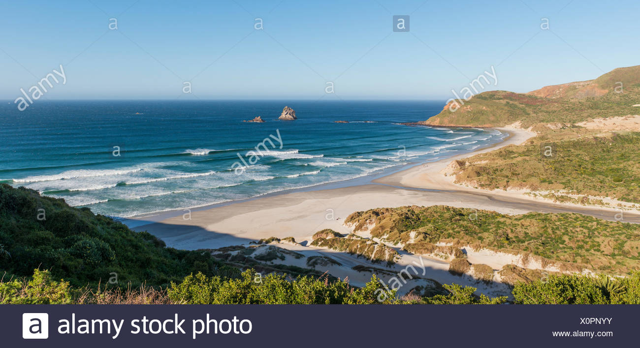 View of sandy beach, Bay Sandfly Bay, Dunedin, Otago, Otago Peninsula, Southland, New Zealand - Stock Image