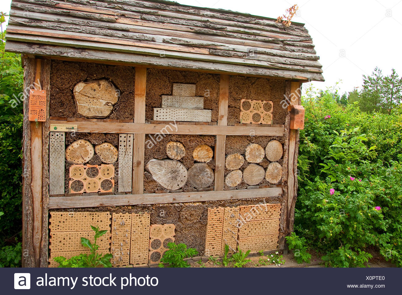 insect hotel in a garden, Germany - Stock Image