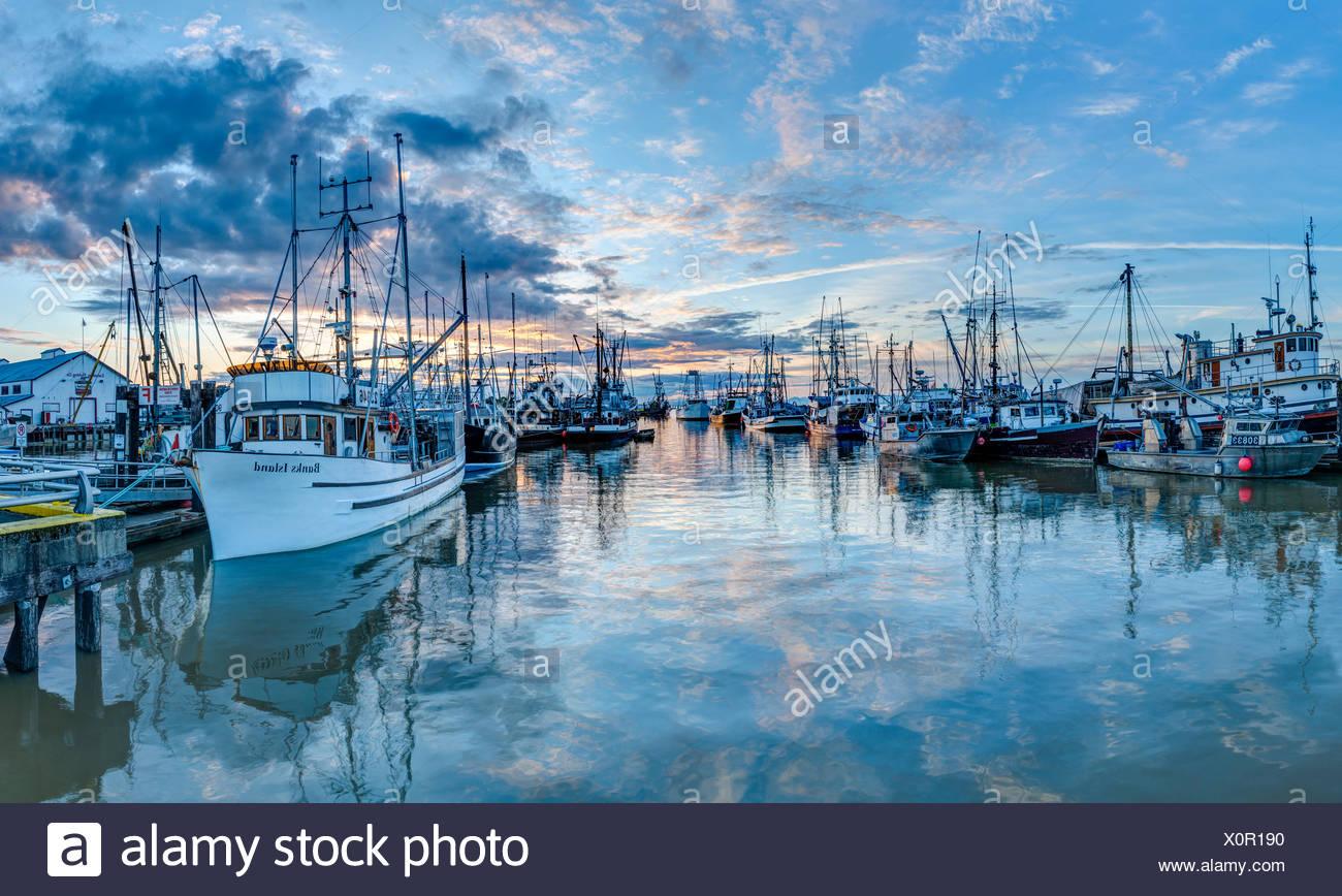 Fishing boats at Steveston harbour - Stock Image