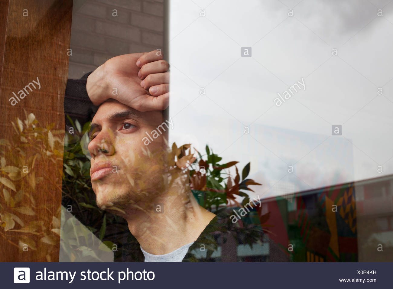 Young man with hand on head, looking through window - Stock Image