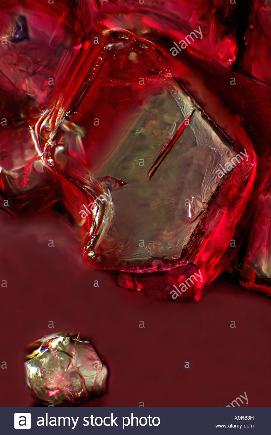 Sugar crystal, ordinary table sugar dissolves in cherry juice, photomicrography - Stock Image