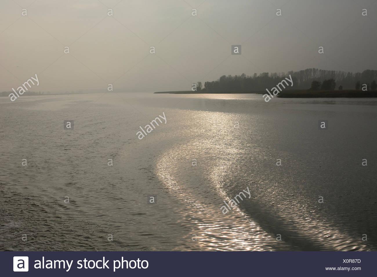Lagoon of Stettin, water, waves, gleam of light, Wolgast, Mecklenburg-Vorpommern, Germany Stock Photo