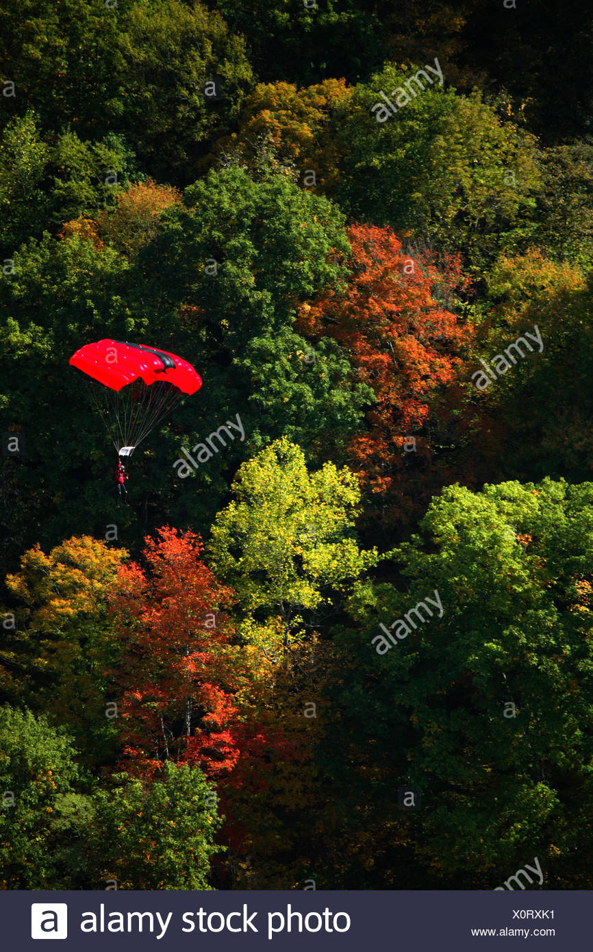Unknown basejumper floats down under his canopy past autumn colors in the New River Gorge at the 2007 Bridge Day event in Fayett - Stock Image