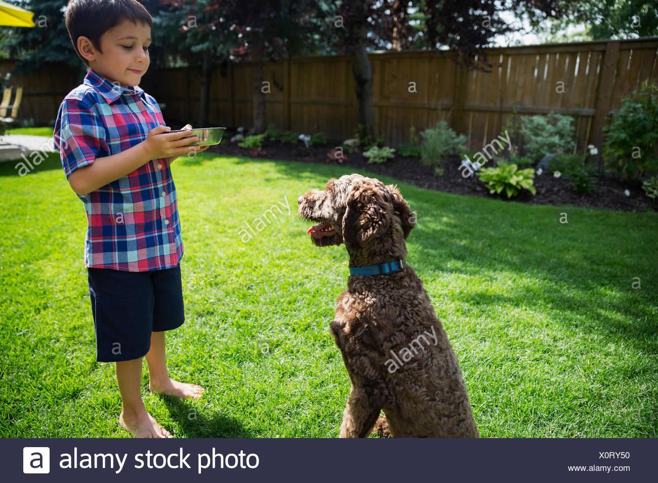 Boy feeding dog on sunny lawn - Stock Image