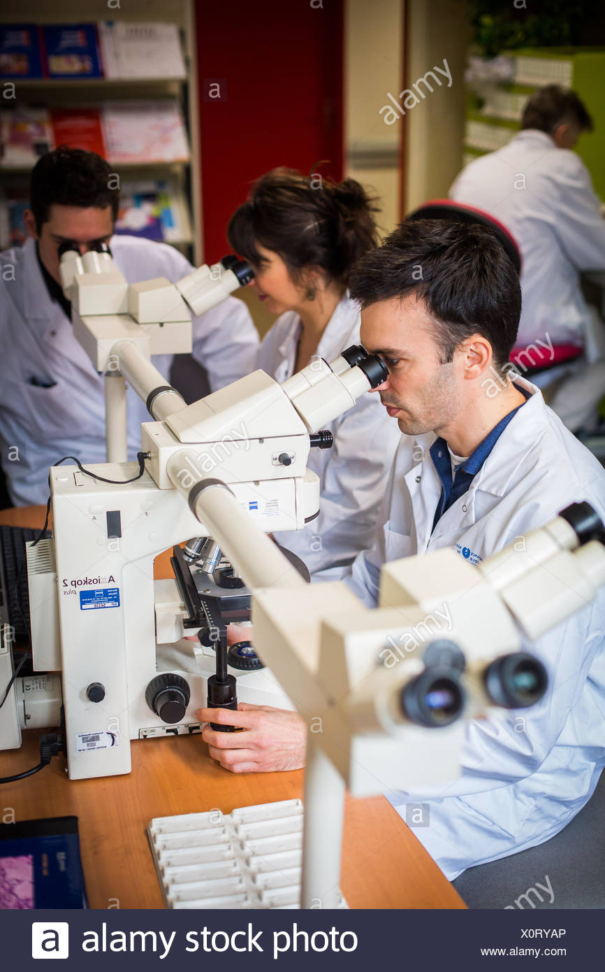 Anatomopathology diagnosis, Tenon hospital, Paris, France. - Stock Image
