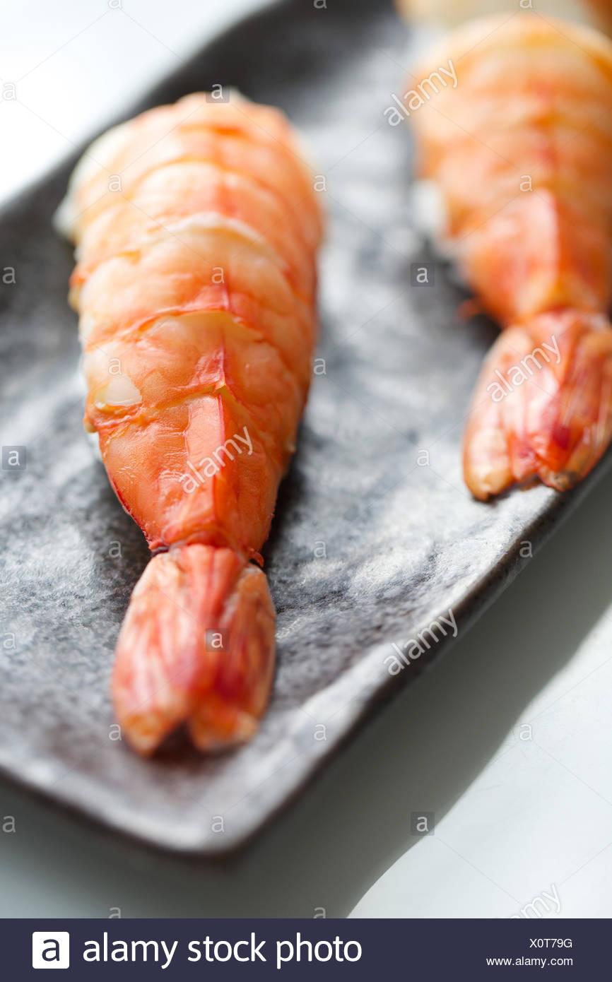 Shrimp Sushi On Tray Seafood Raw Japanese Food Fish Stock Photo