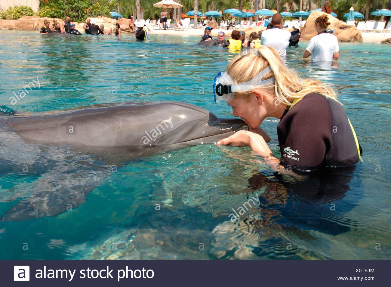 Woman kissing a dolphin, Discovery Cove, adventure park, Orlando, Florida, USA, North America - Stock Image
