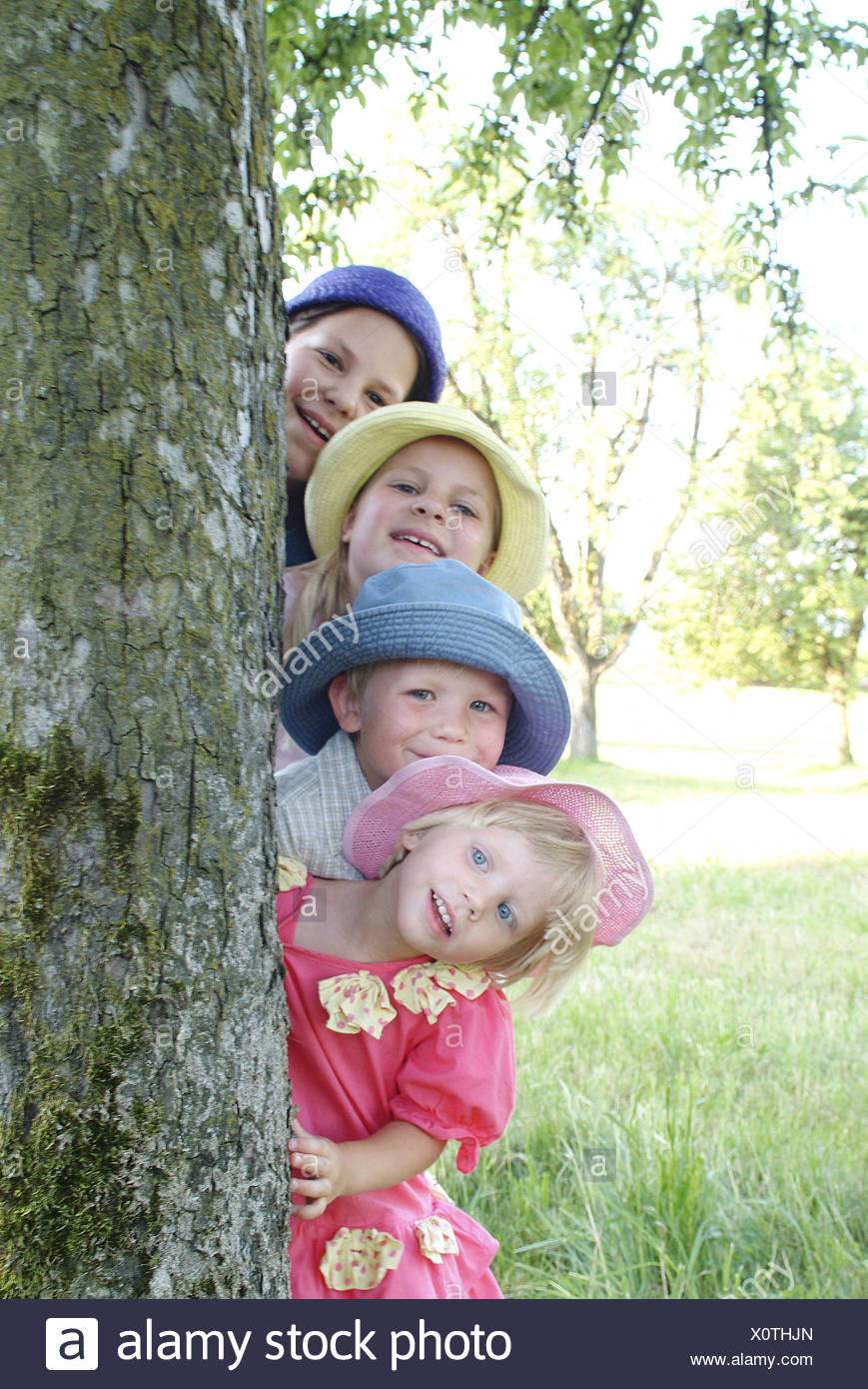 Log, girls, boy, smiles,  forth-sees, portrait,   Child portrait, children, siblings, friends, four, 4-12 years, hats, headgears, gaze camera, fun, happiness, childhood, 'organ pipes', summers, outside, nature, tree, trunk, - Stock Image