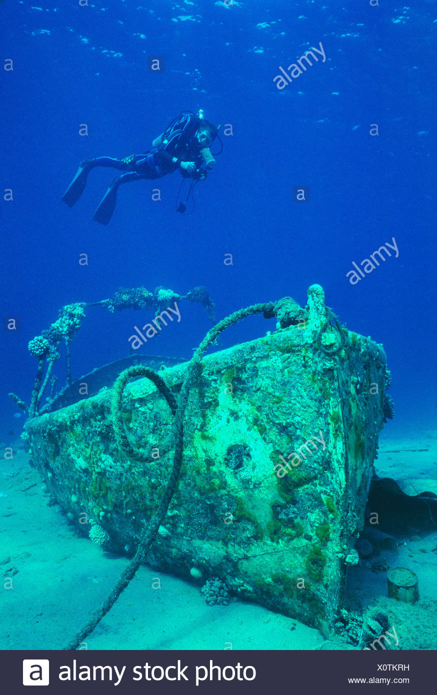 Egypt. Red Sea. Scuba diving. Diver over sunken boat. - Stock Image
