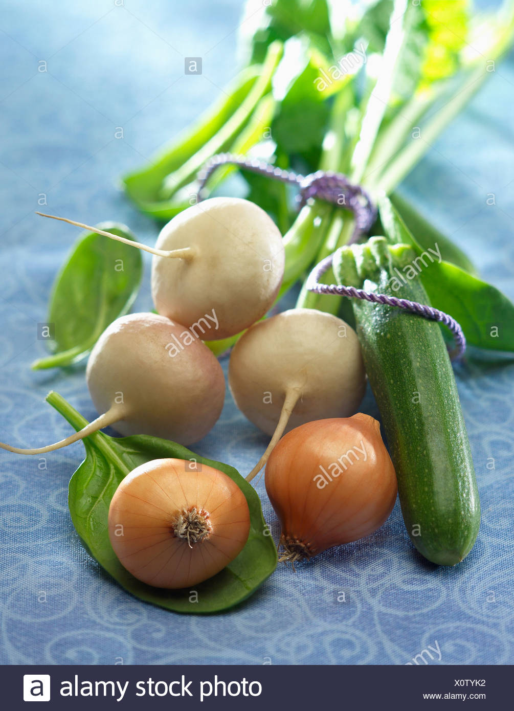 Onions,turnips and zucchinis - Stock Image