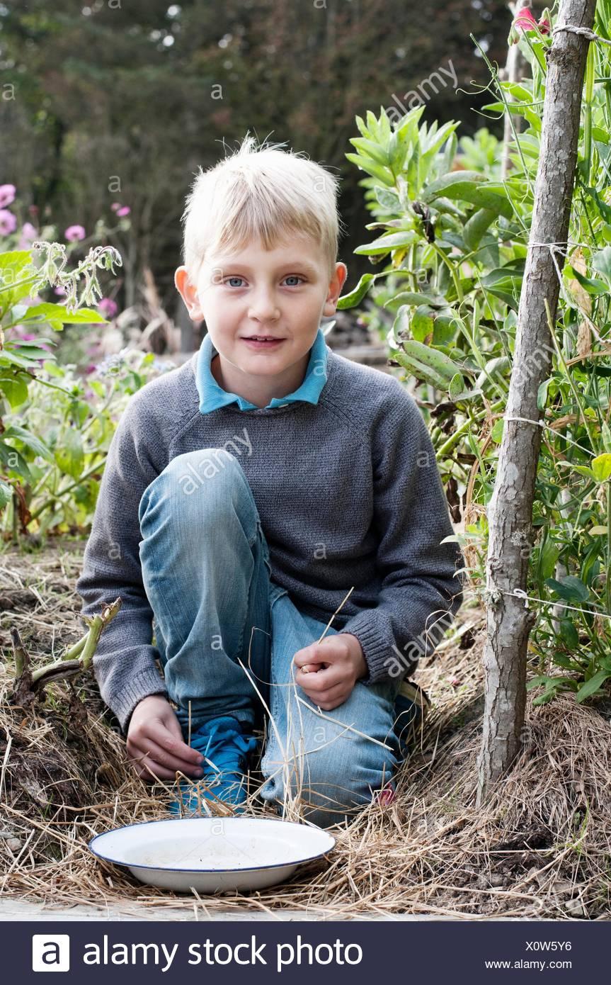 Portrait of boy kneeling in organic garden - Stock Image
