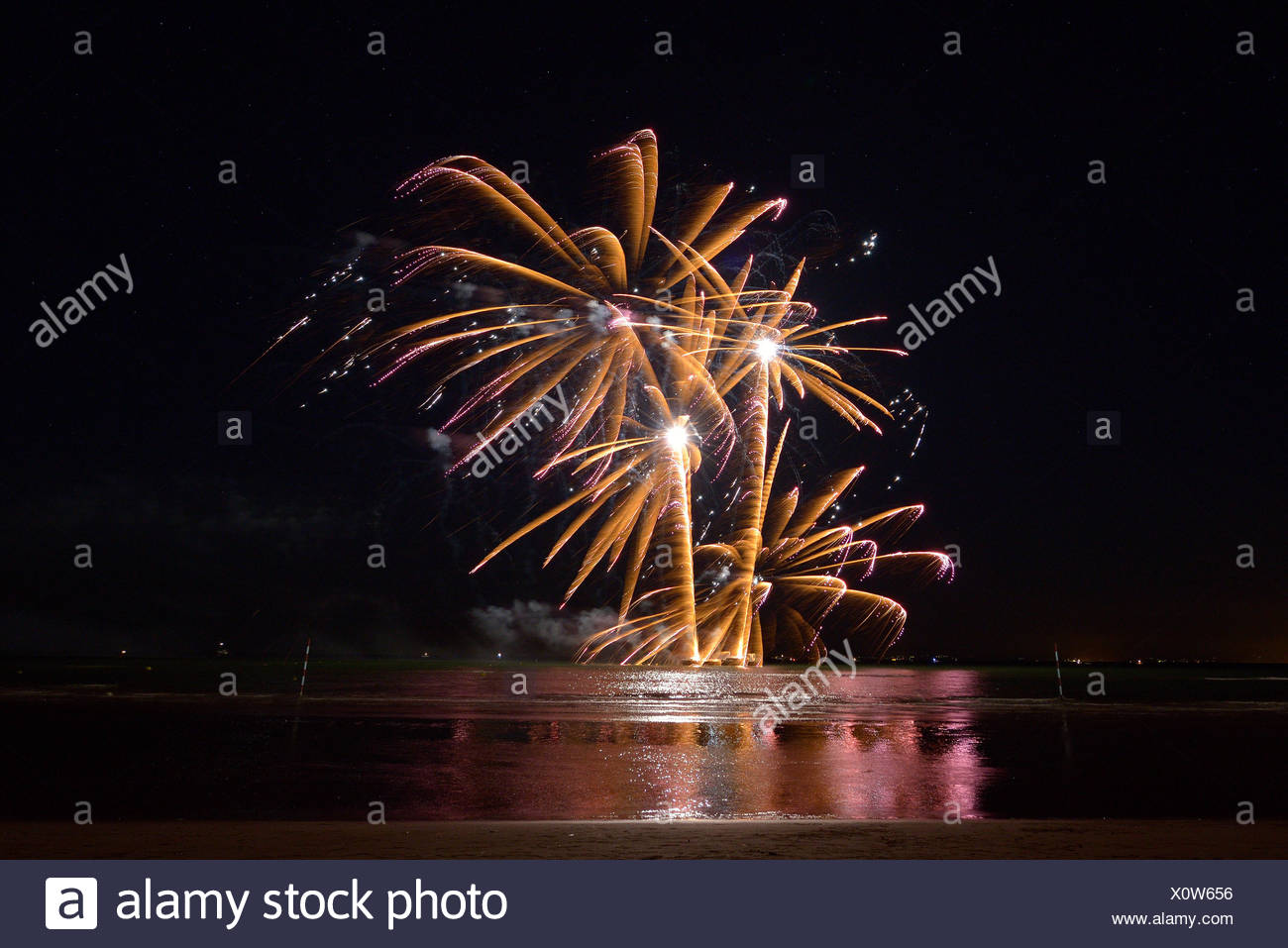 night fireworks generates palms - Stock Image