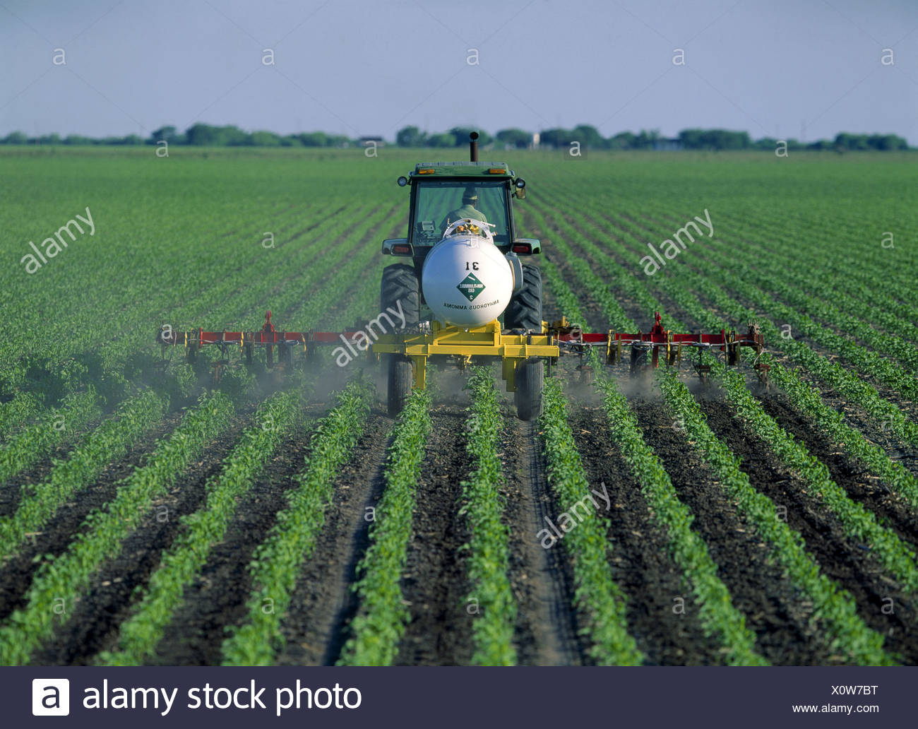 SIDE DRESSING CORN WITH ANHYDROUS AMMONIA USING JOHN DEERE 4840 WITH 12 ROW TOOL BAR AND ROLLING CULTIVATOR ATTACHMENTS AS WELL - Stock Image