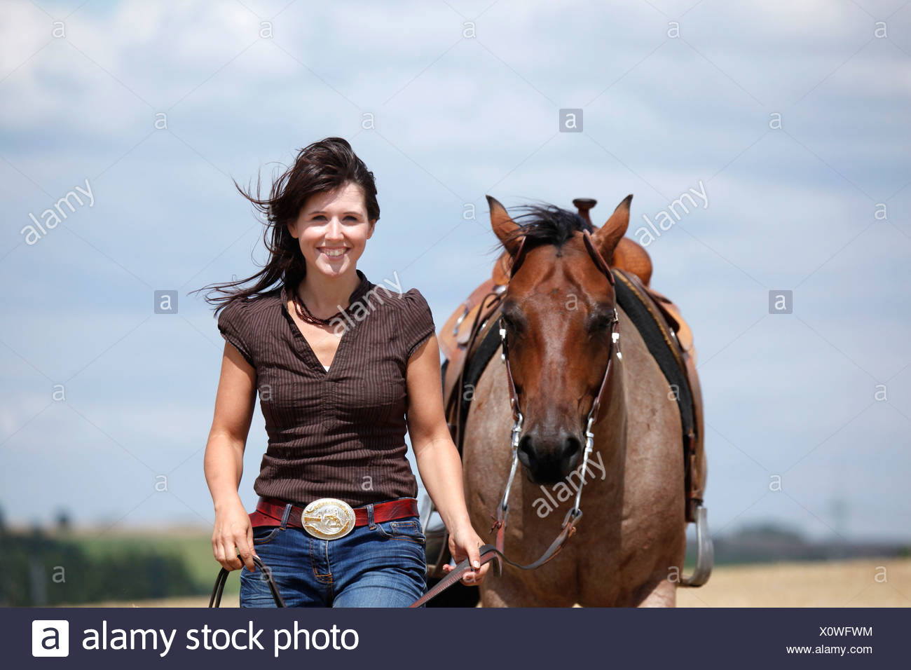 western riding horsewoman - Stock Image
