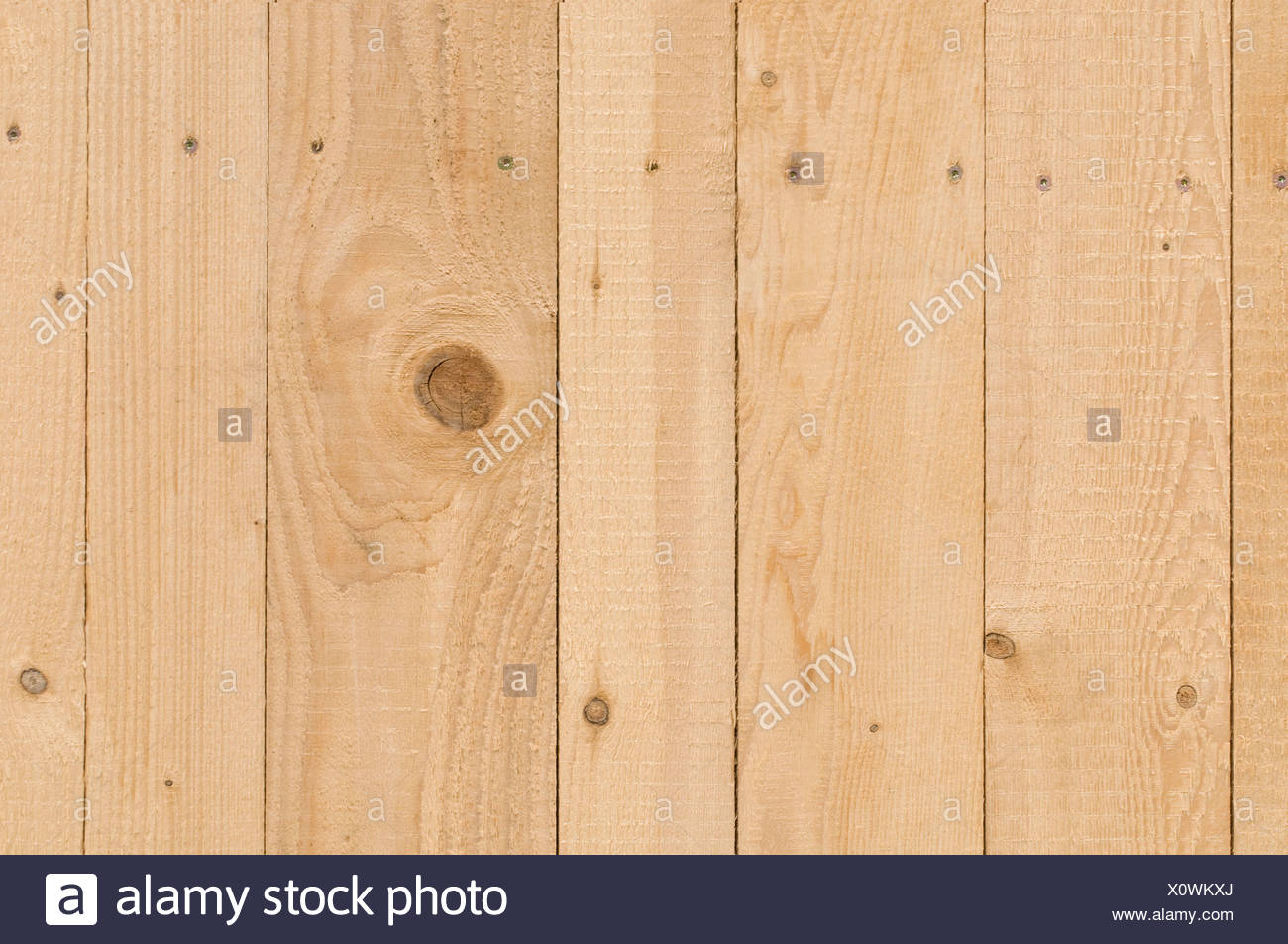 Detail, new plywood wall with screws, rough surface from the plane impact, background - Stock Image