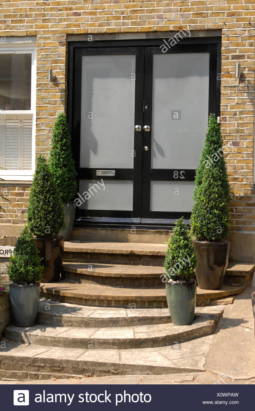 Double Glass And Black Front Doto A Brick House With Steps Up To Doand Potted Topiary Trees Either Side Stock Photo Alamy