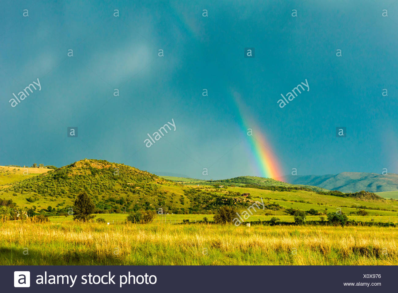 Countryside, Monaghan Farm, Lanseria, Johannesburg, Province of Gauteng, Republic of South Africa, Africa. Rainbow after storm. - Stock Image