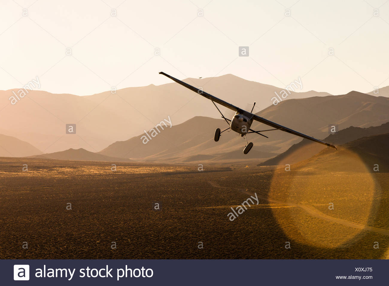 Kevin Quinn's highly modified 1953 Cessna 180 Skywagon flies in late afternoon light in the Nevada Desert. - Stock Image
