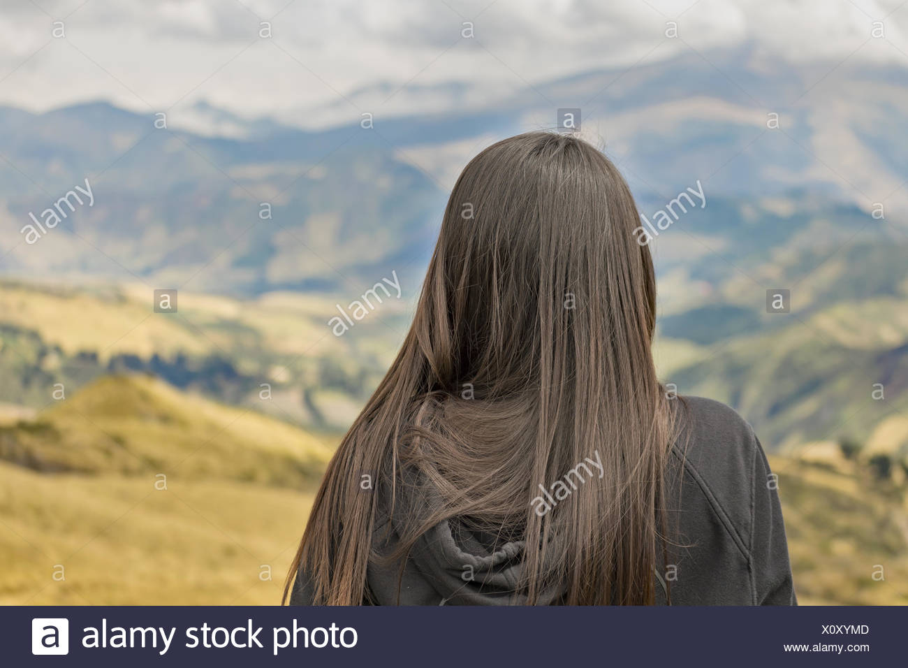 Back View Woman Contemplating the Landscape - Stock Image