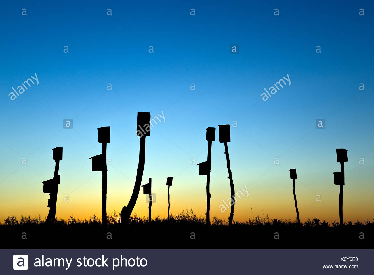 Birdhouses placed in a salt marsh Sandwich Cape Cod MA Massachusetts - Stock Image